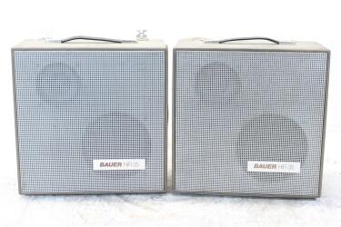 HiFi 35 8 Ohm 25/35W Type 7 Speaker Set EV-ZV-6-6355