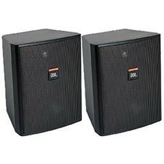 Control 25T Black Compact Indoor/Outdoor Speaker AXL5-AXL-PL-7-12933-bv